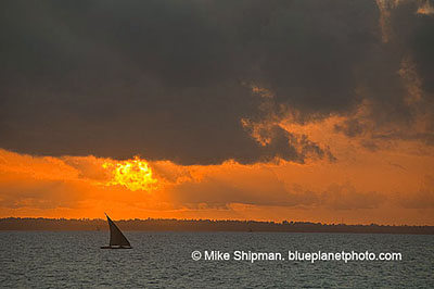 Dhow at sunrise. width=